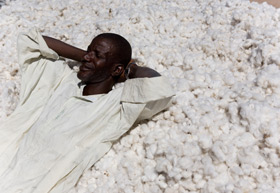 fairtrade-cotton-farmer